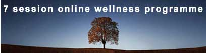 7 session online wellness programme